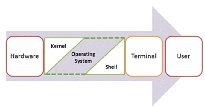 komponenti-programmi-shell